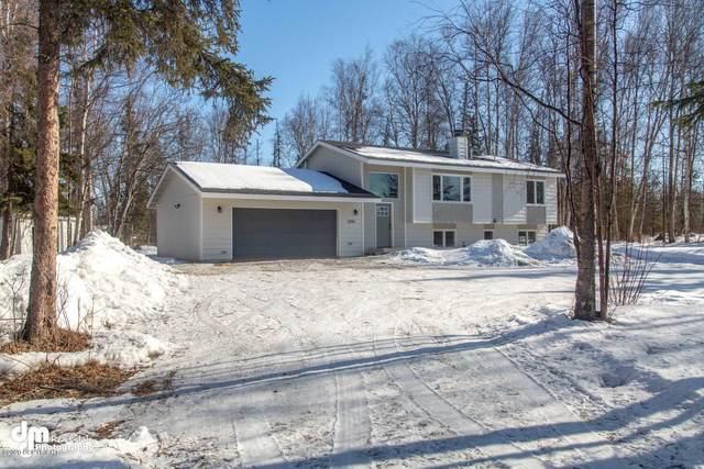 3395 S Donovan Drive, Wasilla, AK 99623 (MLS #20-4349) :: Wolf Real Estate Professionals