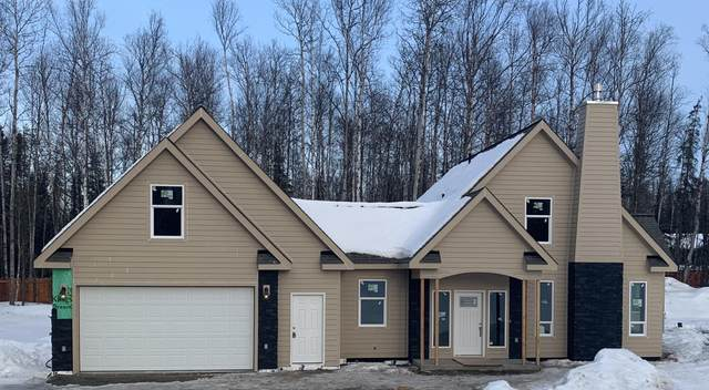 995 S Rosehip Place, Wasilla, AK 99623 (MLS #20-4501) :: Wolf Real Estate Professionals