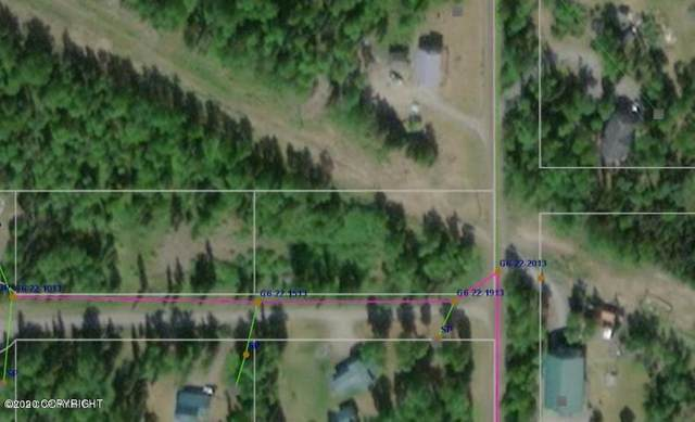 Tr 6C Kendanemken Court, Soldotna, AK 99669 (MLS #20-4563) :: Roy Briley Real Estate Group
