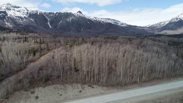L3 Pinochle, Chickaloon, AK 99674 (MLS #20-5452) :: RMG Real Estate Network | Keller Williams Realty Alaska Group