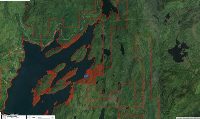 0000 Upper George Inlet, Ketchikan, AK 99901 (MLS #20-5468) :: RMG Real Estate Network | Keller Williams Realty Alaska Group