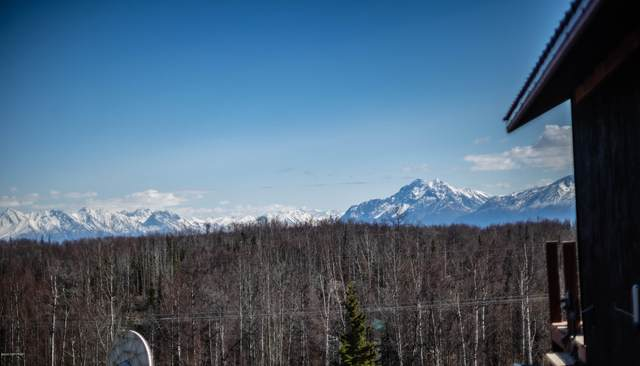 4000 Vine Road, Wasilla, AK 99623 (MLS #20-5706) :: Wolf Real Estate Professionals