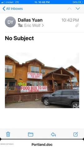 MI 238.6 Parks Highway, Denali National Park, AK 99755 (MLS #20-5730) :: Wolf Real Estate Professionals