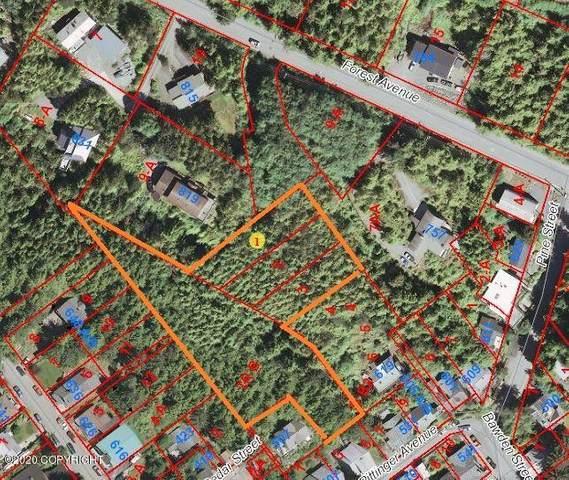 700 Block Forest Avenue, Ketchikan, AK 99901 (MLS #20-5911) :: Wolf Real Estate Professionals
