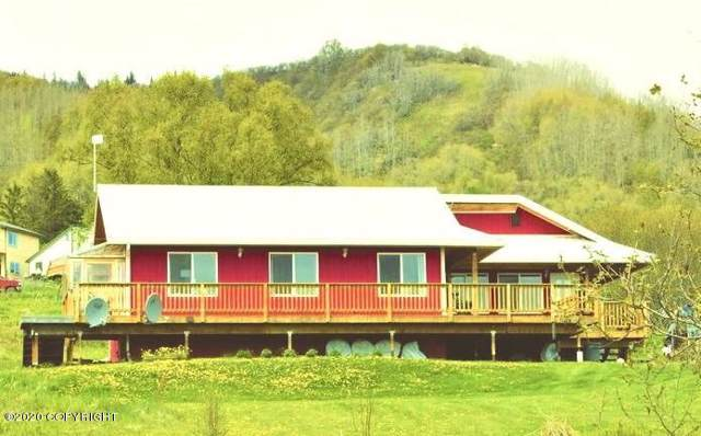 40165 Portlock Drive, Homer, AK 99603 (MLS #20-592) :: RMG Real Estate Network | Keller Williams Realty Alaska Group