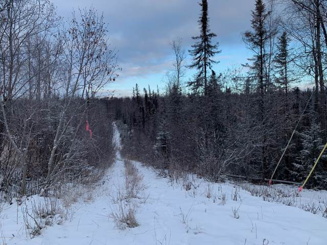 5537 This Way, Wasilla, AK 99654 (MLS #20-594) :: RMG Real Estate Network | Keller Williams Realty Alaska Group