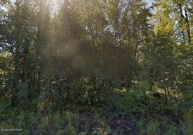 1130 Dan Street, Wasilla, AK 99654 (MLS #20-6113) :: Wolf Real Estate Professionals