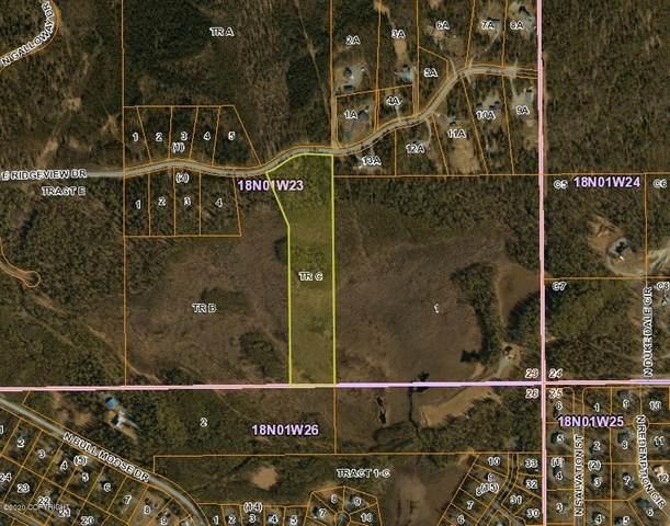 Tr C E Ridgeview, Wasilla, AK 99654 (MLS #20-6139) :: Team Dimmick