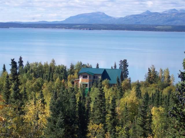 777 Marthasrest Mountain, Port Alsworth, AK 99653 (MLS #20-62) :: Alaska Realty Experts