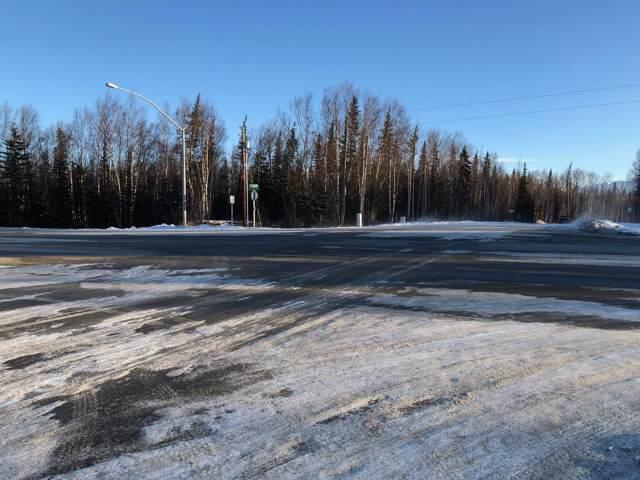 L1 N Wasilla-Fishhook Road, Wasilla, AK 99654 (MLS #20-623) :: RMG Real Estate Network | Keller Williams Realty Alaska Group