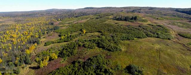 C34 Alaskan Wildwood Ranch(R), Anchor Point, AK 99556 (MLS #20-6436) :: Wolf Real Estate Professionals