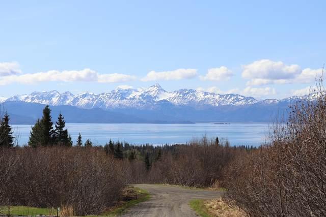 54950 Rolling Meadows Court, Homer, AK 99603 (MLS #20-6447) :: RMG Real Estate Network | Keller Williams Realty Alaska Group