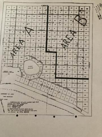 L4 B8 Cooper Lane, Chitina, AK 99566 (MLS #20-6452) :: RMG Real Estate Network | Keller Williams Realty Alaska Group