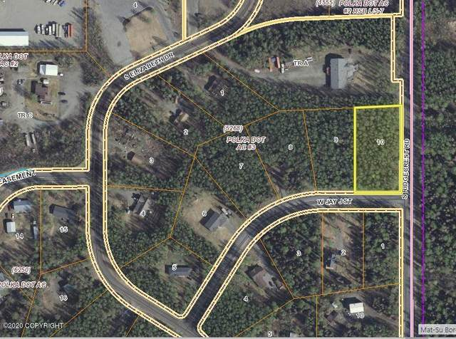 9625 W Jay J Street, Wasilla, AK 99623 (MLS #20-6536) :: Wolf Real Estate Professionals