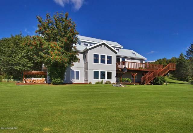 59065 Meadow Lane, Homer, AK 99603 (MLS #20-6557) :: RMG Real Estate Network | Keller Williams Realty Alaska Group