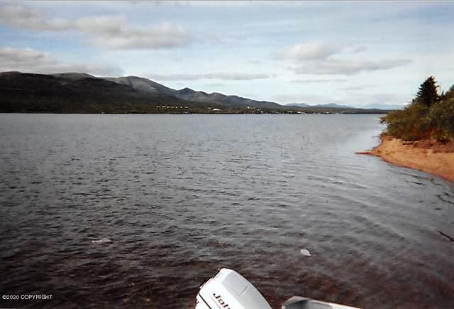 L6 Lake Clark, Nondalton, AK 99606 (MLS #20-6876) :: Alaska Realty Experts