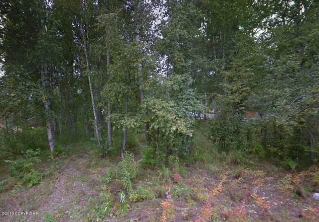 9838 S Twilight Drive, Wasilla, AK 99623 (MLS #20-6984) :: Alaska Realty Experts