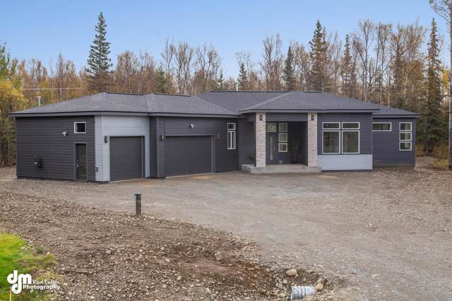3228 E Dreamland Circle, Wasilla, AK 99645 (MLS #20-7061) :: Roy Briley Real Estate Group