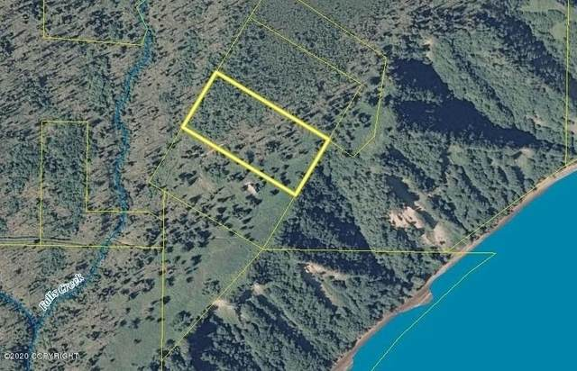 000 Alaska State Land Survey, Homer, AK 99603 (MLS #20-7089) :: RMG Real Estate Network | Keller Williams Realty Alaska Group