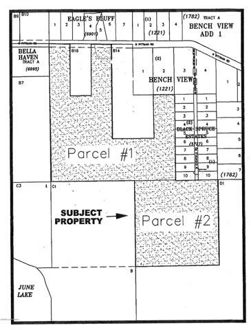 D002 Easement, Wasilla, AK 99623 (MLS #20-718) :: RMG Real Estate Network | Keller Williams Realty Alaska Group