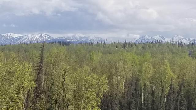 1830 S Vine Road, Wasilla, AK 99654 (MLS #20-7214) :: Roy Briley Real Estate Group