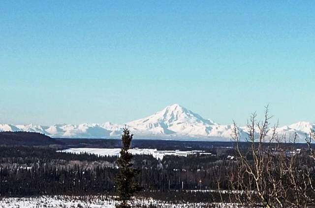 40495 Grande Heights Drive, Soldotna, AK 99669 (MLS #20-725) :: Alaska Realty Experts