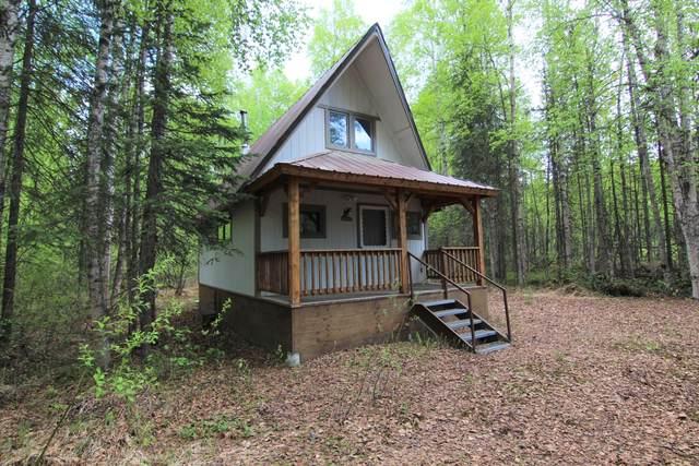 47907 S Bendapole Road, Willow, AK 99688 (MLS #20-7254) :: RMG Real Estate Network | Keller Williams Realty Alaska Group