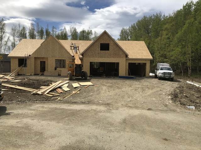 10677 E Mystical View Circle, Palmer, AK 99645 (MLS #20-7257) :: Roy Briley Real Estate Group