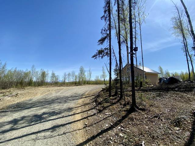11162 W Benedict, Big Lake, AK 99652 (MLS #20-7316) :: Team Dimmick