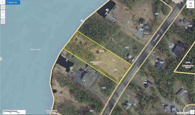 3156 N Alma Drive, Wasilla, AK 99623 (MLS #20-7349) :: Wolf Real Estate Professionals