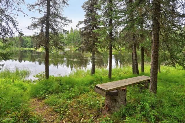 L6 Moose River Drive, Sterling, AK 99672 (MLS #20-7392) :: RMG Real Estate Network   Keller Williams Realty Alaska Group