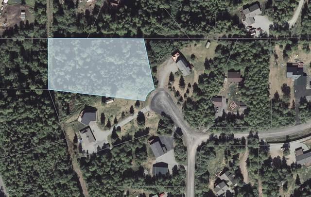 000 Platsek Drive, Chugiak, AK 99567 (MLS #20-7553) :: RMG Real Estate Network | Keller Williams Realty Alaska Group