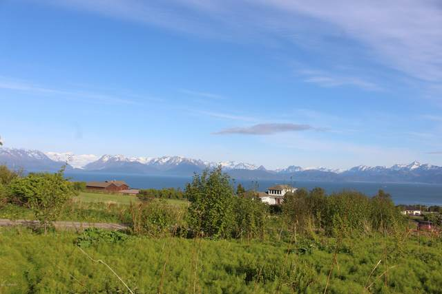 L6A B1 Morning Star Road, Homer, AK 99603 (MLS #20-7623) :: RMG Real Estate Network | Keller Williams Realty Alaska Group
