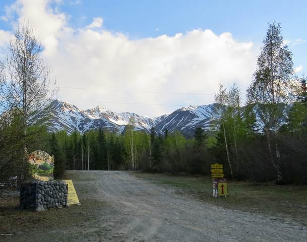 1 Cathedral Creeks, Tok, AK 99780 (MLS #20-7641) :: Team Dimmick