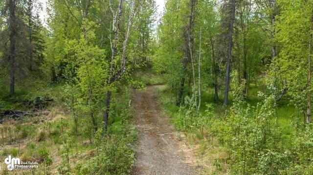 4130 N Caribou Street, Wasilla, AK 99654 (MLS #20-7653) :: Alaska Realty Experts