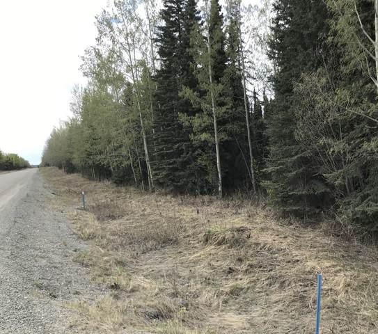 34140 Browns Lake Road, Soldotna, AK 99669 (MLS #20-7740) :: RMG Real Estate Network | Keller Williams Realty Alaska Group