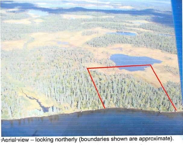 L2 Okstukuk Lake, Aleknagik, AK 99636 (MLS #20-7750) :: Alaska Realty Experts