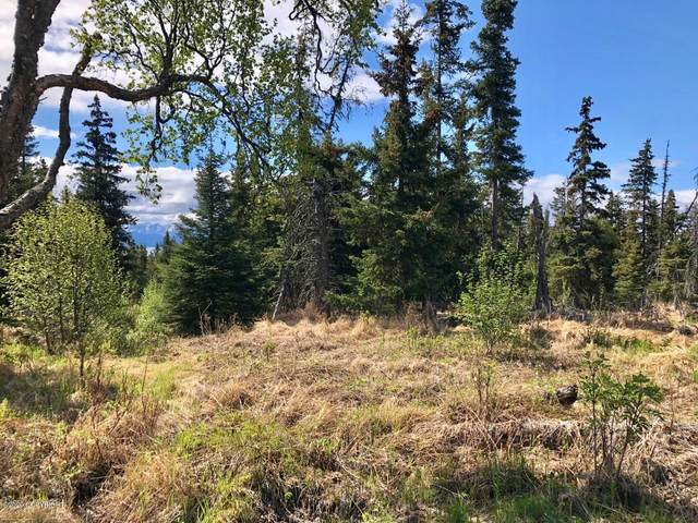 Tr J-1 Benjamin Avenue, Homer, AK 99603 (MLS #20-7755) :: RMG Real Estate Network | Keller Williams Realty Alaska Group