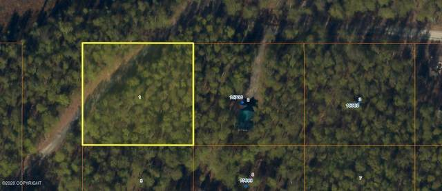 L1 No Road Road, Big Lake, AK 99652 (MLS #20-7891) :: RMG Real Estate Network | Keller Williams Realty Alaska Group