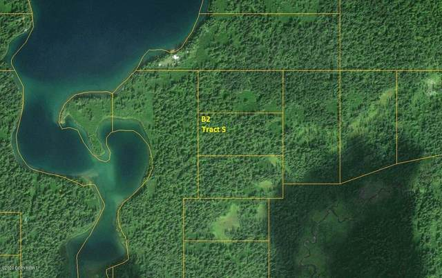 Tr S (B2) Hiline Lake (No Road), Remote, AK 99000 (MLS #20-7946) :: RMG Real Estate Network | Keller Williams Realty Alaska Group