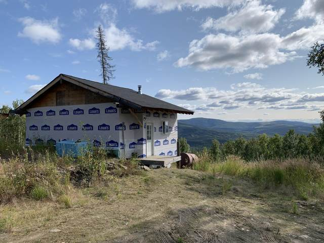1244 Leuthold Drive, Fairbanks, AK 99712 (MLS #20-8000) :: Wolf Real Estate Professionals