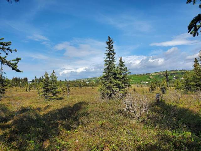 32290 Stacey Lane, Anchor Point, AK 99556 (MLS #20-8057) :: Wolf Real Estate Professionals