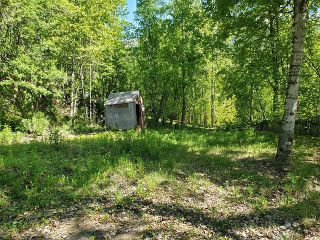 24239 Park Drive, Chugiak, AK 99567 (MLS #20-8068) :: RMG Real Estate Network | Keller Williams Realty Alaska Group