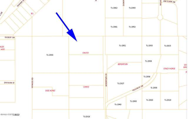 0601 Chena Hot Springs Road, Fairbanks, AK 99712 (MLS #20-8139) :: Wolf Real Estate Professionals