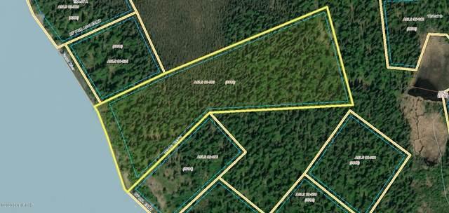 000 No Road, Remote, AK 99000 (MLS #20-8167) :: RMG Real Estate Network | Keller Williams Realty Alaska Group