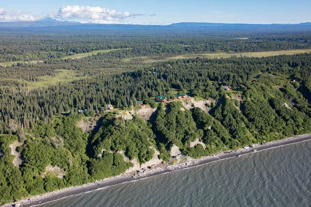 14823 Homestead Drive, Clam Gulch, AK 99568 (MLS #20-8208) :: Wolf Real Estate Professionals