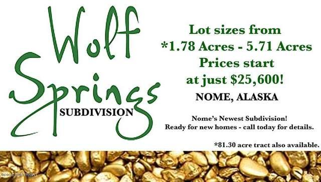 L4 B2 Wolf Springs, Nome, AK 99762 (MLS #20-8217) :: Alaska Realty Experts