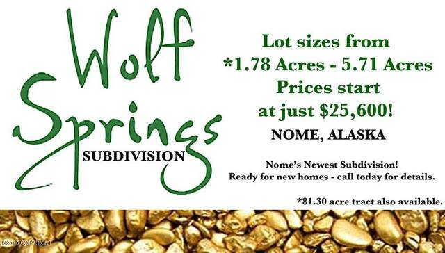 L5 B3 Wolf Springs, Nome, AK 99762 (MLS #20-8235) :: Wolf Real Estate Professionals