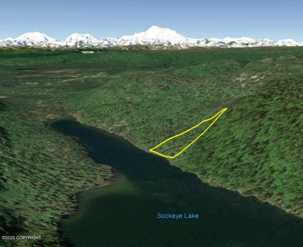 000 No Road, Talkeetna, AK 99676 (MLS #20-8263) :: Team Dimmick
