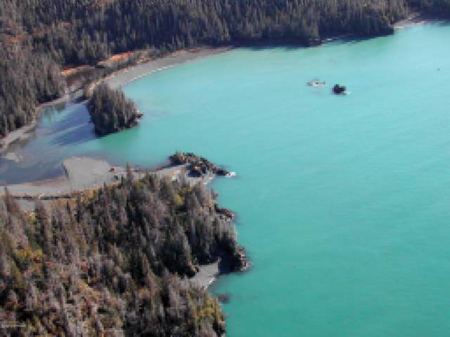 000 Peterson Bay, Halibut Cove, AK 99603 (MLS #20-831) :: Wolf Real Estate Professionals